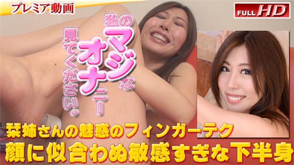 カチん娘! gachip335 栞-别刊マシオナ118