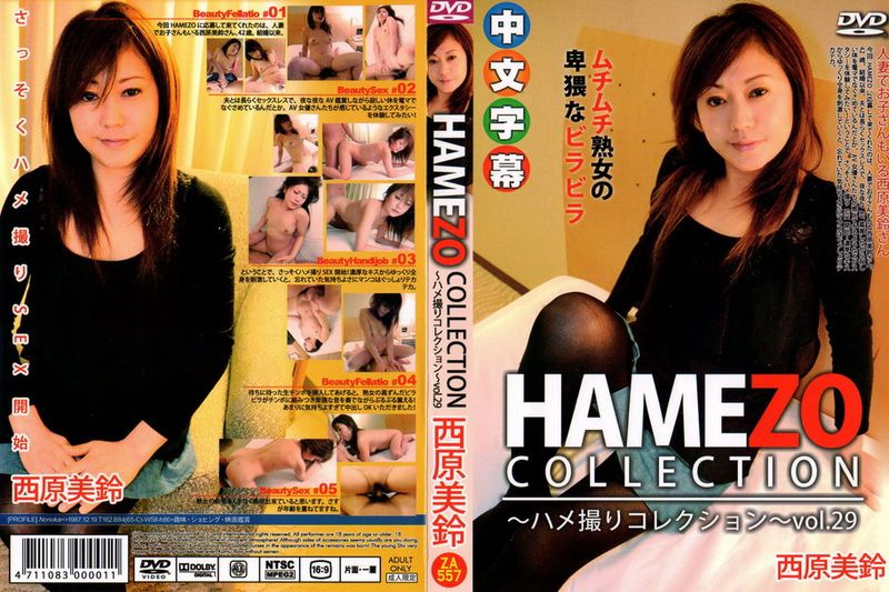 hamezoハメ撮りコレクションvol.29